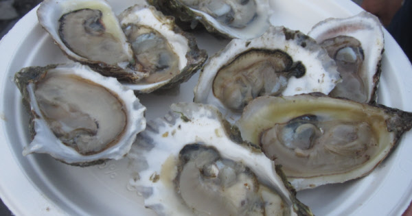 Oysterfest: Oysters and So Much More thumbnail