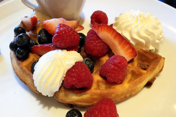 Waffles thumbnail (click to enlarge)